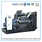 Factory Direct Power Diesel Generators with Chinese Kangwo Brand (250kVA/313kVA)